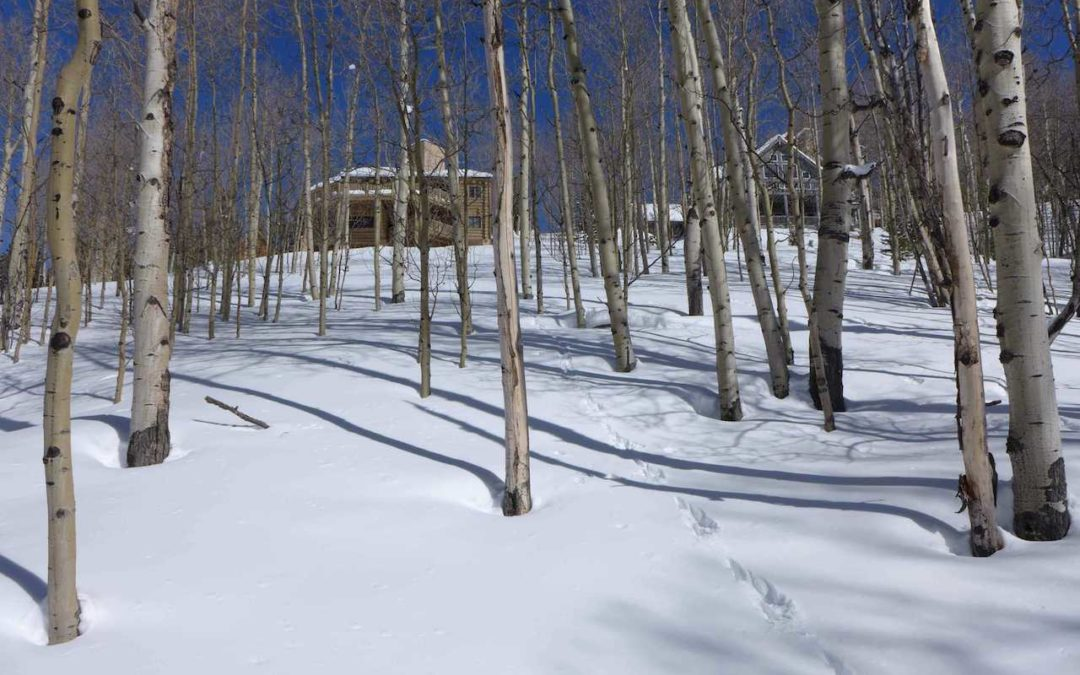 43 Ruby Drive, Mt. Crested Butte