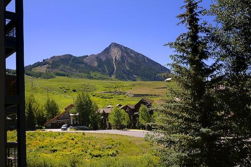 New Listing ~ 400 Gothic Road, Unit 202, Mt. Crested Butte