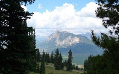665 Red Mountain Ranch Road, Crested Butte ~ Under Contract
