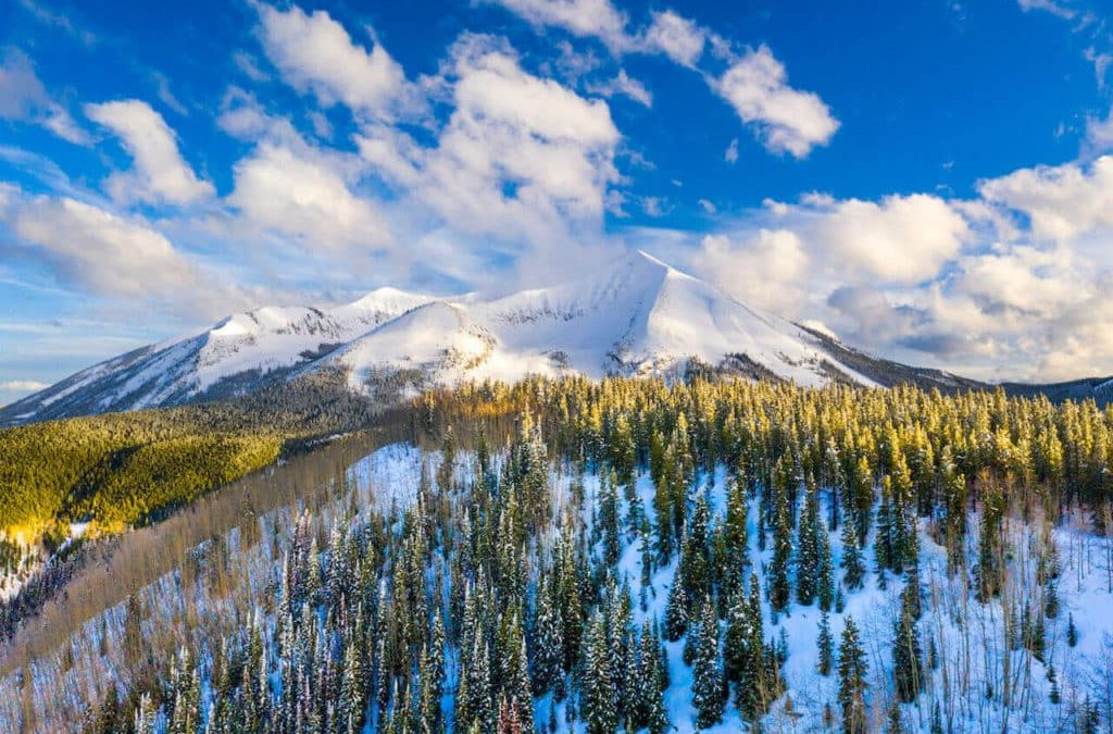 Crested Butte Collection - February 2020 Market Update