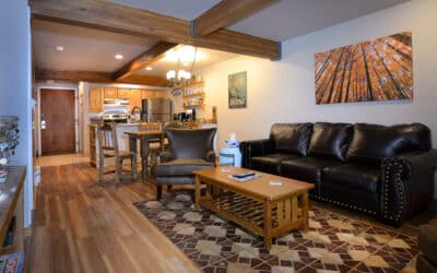 New Listing ~ 11 Hunter Hill Road, Unit 304, Mt. Crested Butte