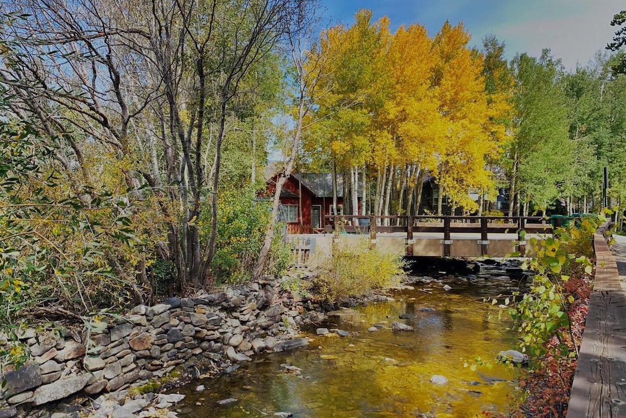 Fall leaves reflecting off of Coal Creek, Crested Butte, CO