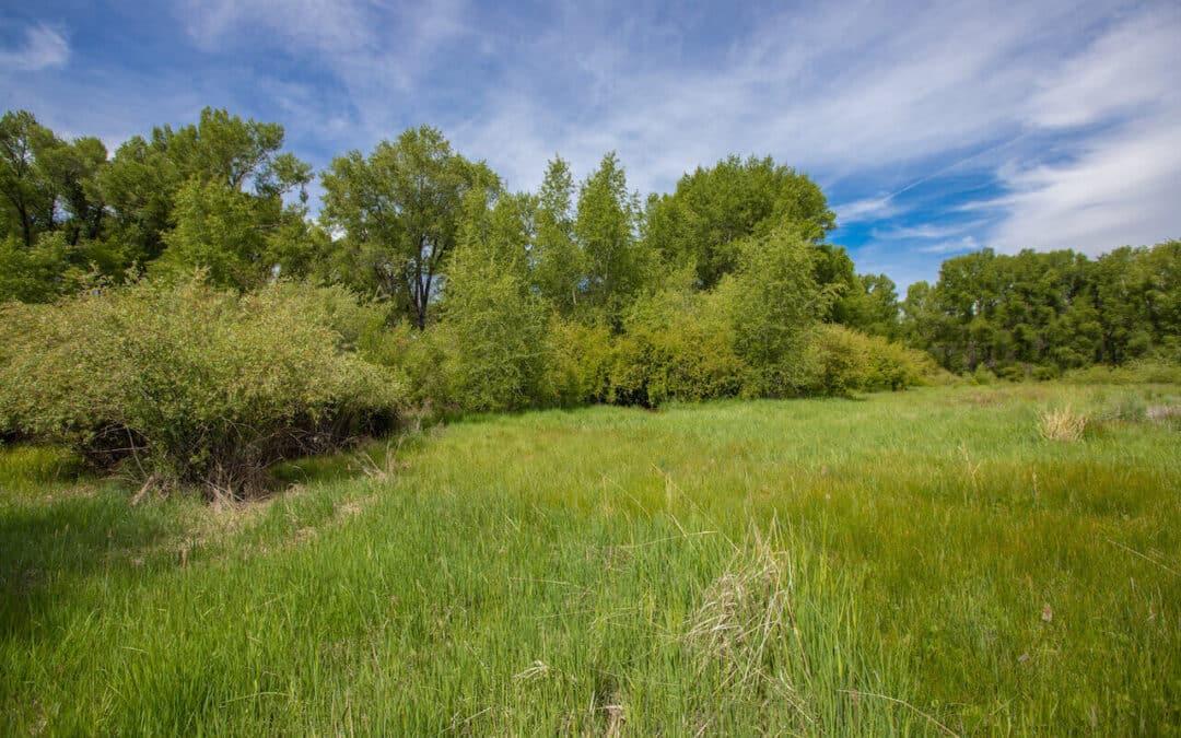 Riverwalk Estates - 235 Kokanee Court, Gunnison(MLS 757170)