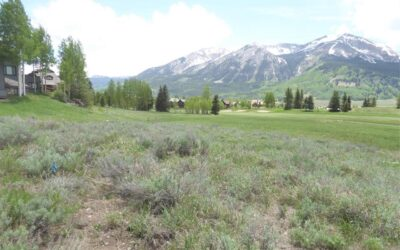 New Listing ~ 345 Skyland Drive, Crested Butte